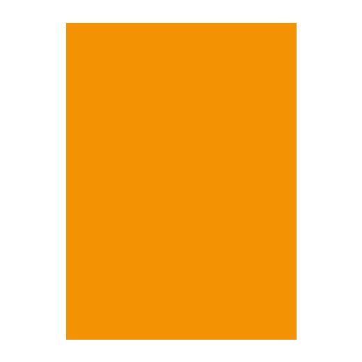 e_icon_orange